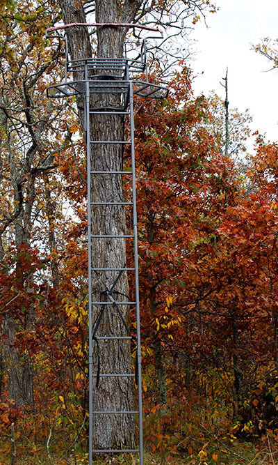 deer stand placement early season