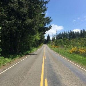 Timber Rd