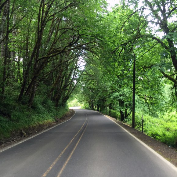Just outside of vernonia