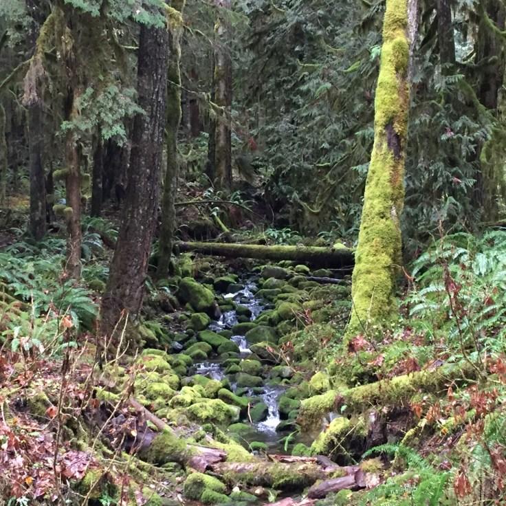 winter_creek_03
