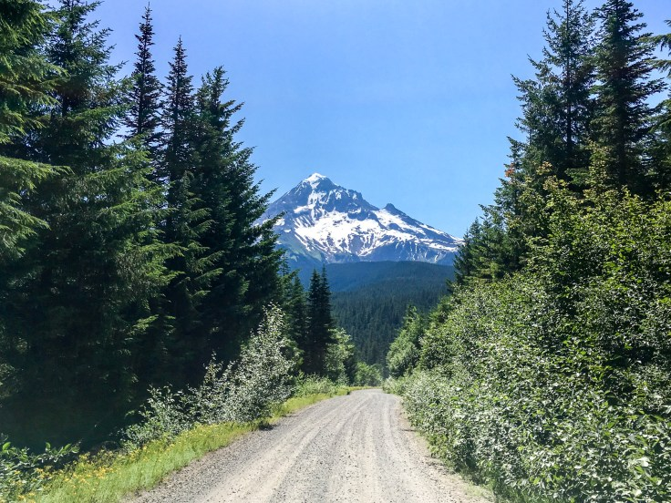NF 1810 - a few miles of gravel