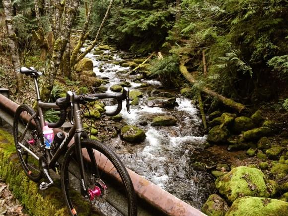 winter_creek_19-3.jpg