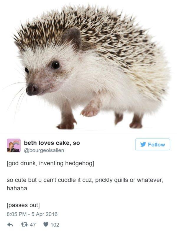 Dios creando animales, practica ingles a base de tweet (19)