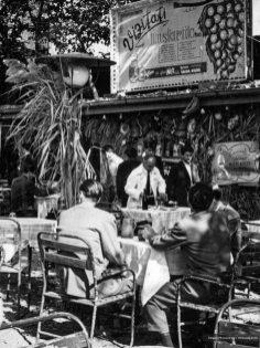 Mustărie, București, 1960 2