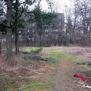 Doar jumatate de hectar din Parcul Verdi a scapat DEFRISARII IMOBILIARE!