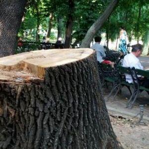 Inca 400 de hectare din parcurile Bucurestiului, retrocedate si transformate in ansambluri rezidentiale!