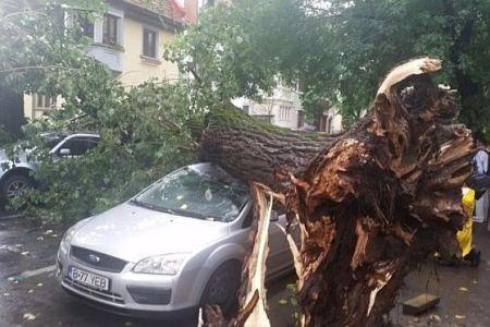 Urmarile furtunii de aseara in Bucuresti: masini distruse, copaci smulsi din radacini…