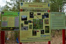 Инструкции к экологической тропе к Янжиме