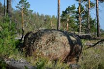 Круглый камень
