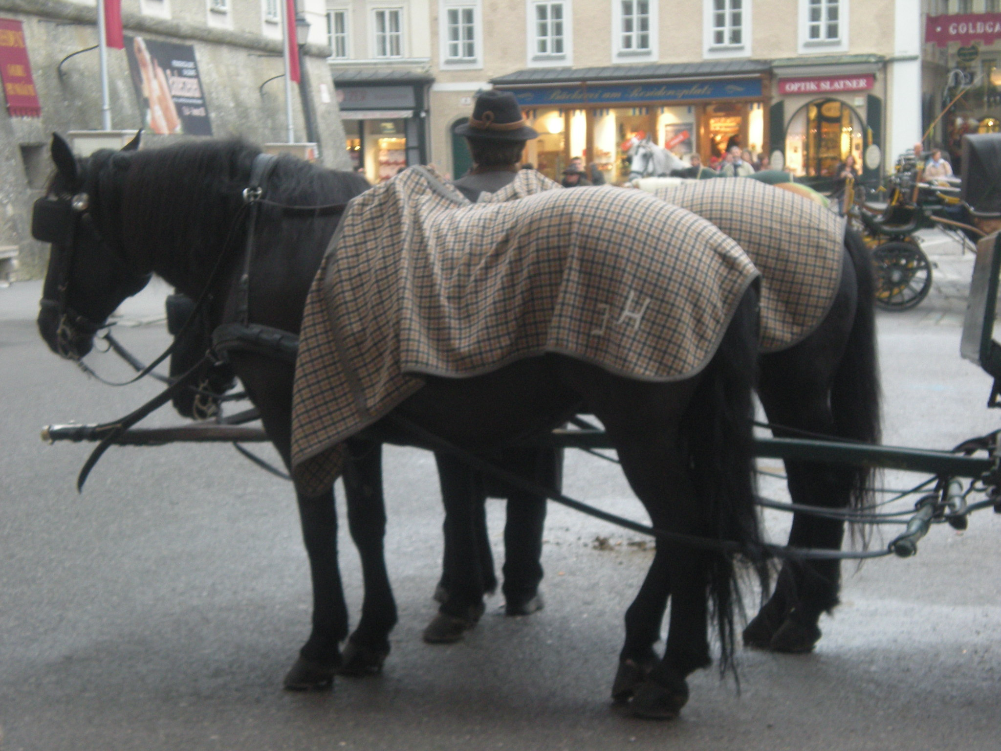 Salzburg horse and carriage