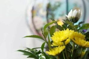 お墓参り お花 種類 価格