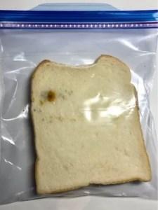 言霊実験 食パン無視