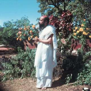 "a young, vibrant Osho ""earthing"" in the garden"