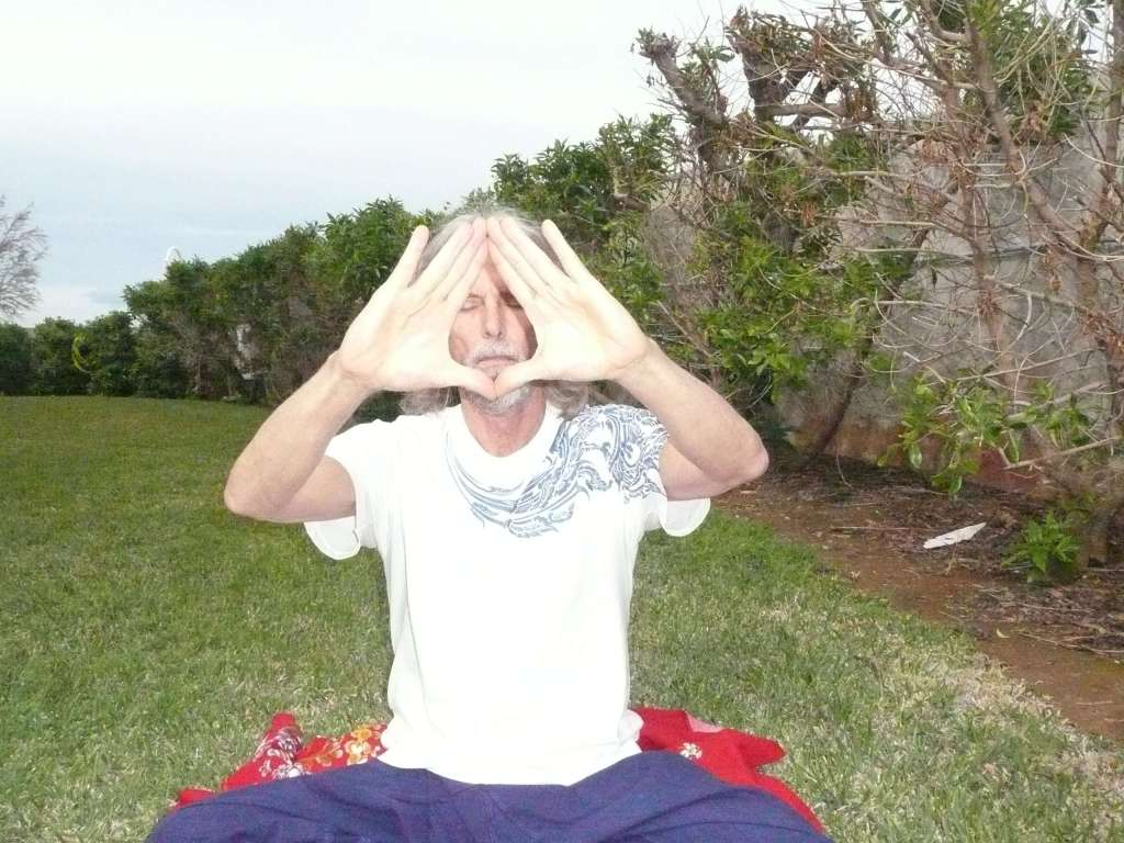 """The """"Bodhi Tree"""" Mudra for sharing peace and healing energy..."""