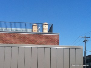 Beehives on the roof of the new cafeteria - Gonzaga University.