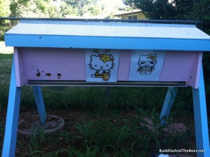 Hello Kitty with the pictures in place
