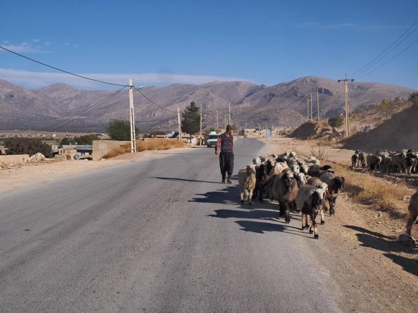 DAY 14… Dorodzan Lake to Tang-e Boraq