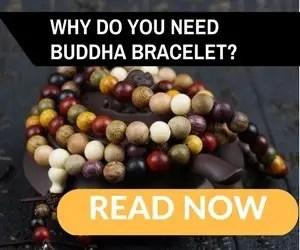 Buddha bracelets fabbeat 300