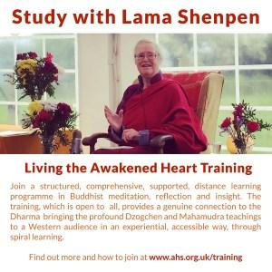Study with Lama Shenpen Hookham