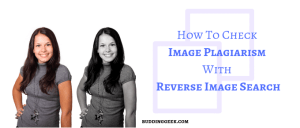 How To Check Image Plagiarism With Reverse Image Search