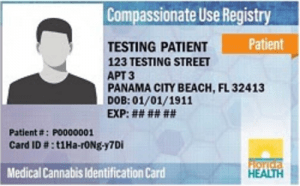 Florida Card Of Picture Identification