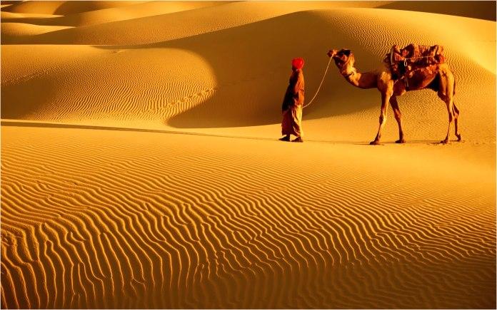 jodhpur thar desert