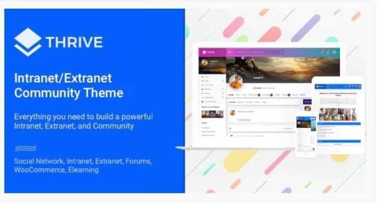 Top WordPress Extranet Themes