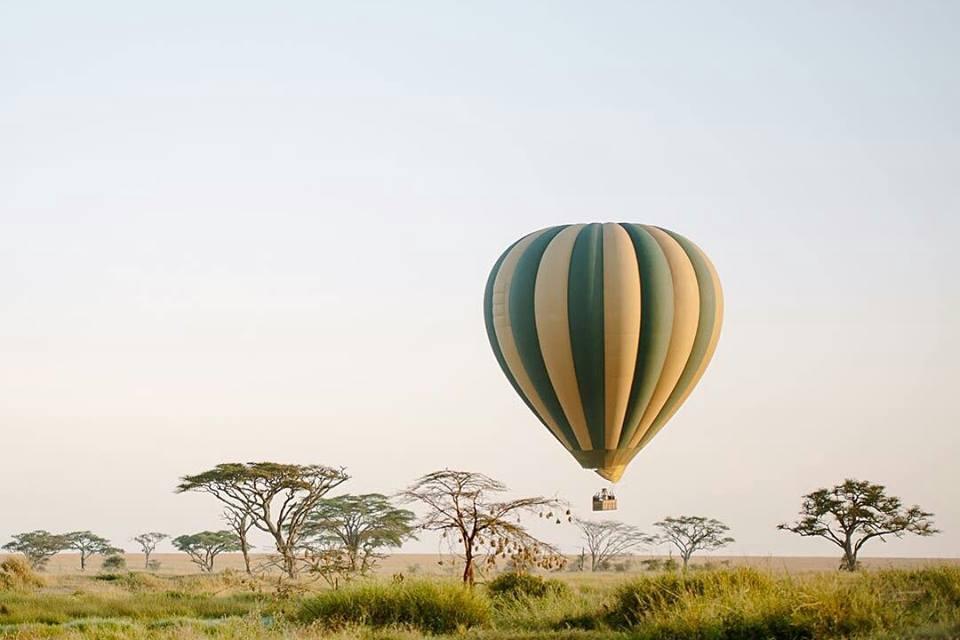 One Day Serengeti Balloon Safari