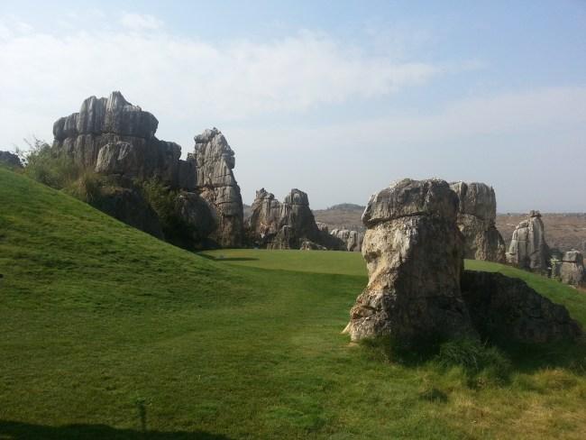 GREEN AMONST THE ROCKS