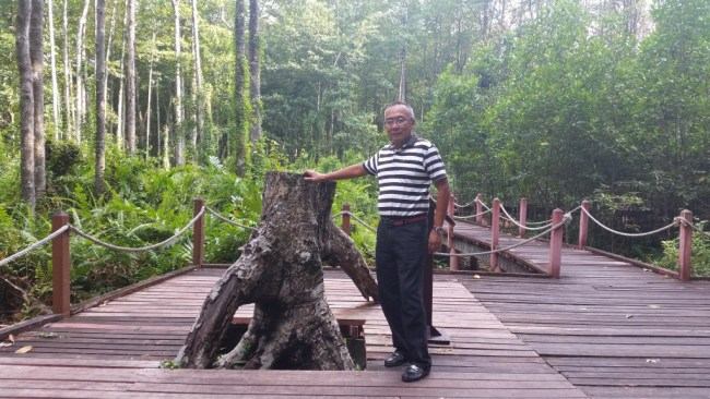NIK POSING AT THE LARGEST AND OLDEST MANGROVE TREE