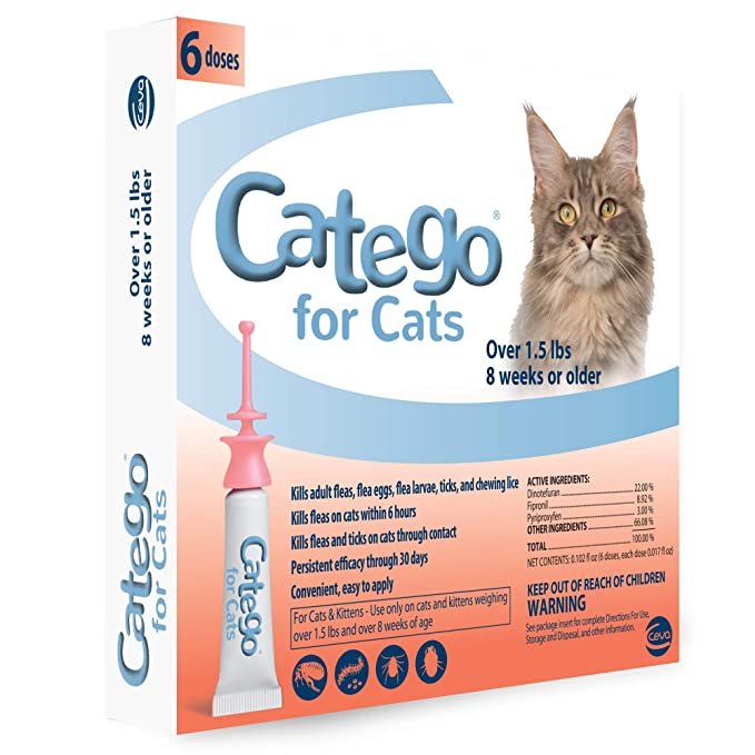 Catego For Cats Reviews 2020