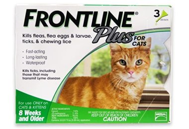 Frontline For Cats Reviews 2020