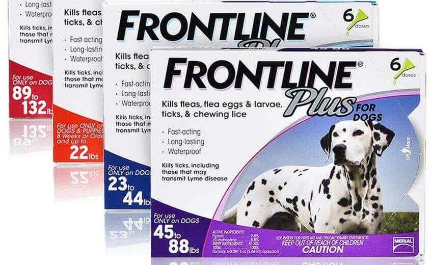 Frontline Plus For Cats Reviews 2020