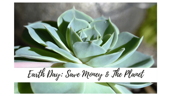 Ways to Save Money AND the Earth at the Same Time