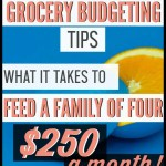 My grocery budget used to be my biggest budget buster! Now, thanks to these grocery budgeting tips, my food budget is my biggest money saver! It's amazing! I am so thankful I found this and have started implementing these tips. Tip #5 is super funny and so true! I have given myself permission to use this grocery budget tip and it is helping me save money fast!