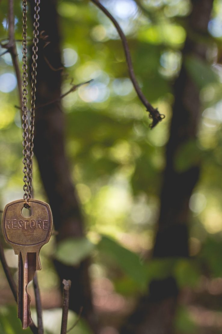 key hanging from tree