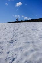 Ptarmigan Ridge
