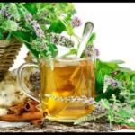 Приготовление настоев и отваров растений при болезнях печени.