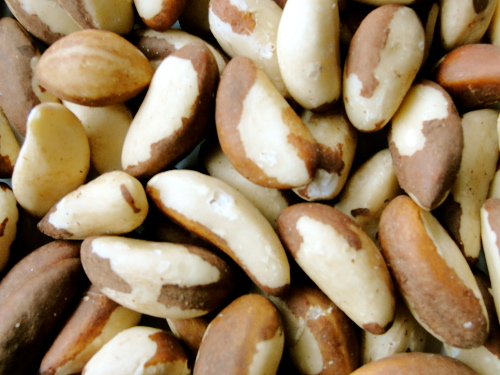 Selenium – The Most Powerful Mineral For Health And Wellness
