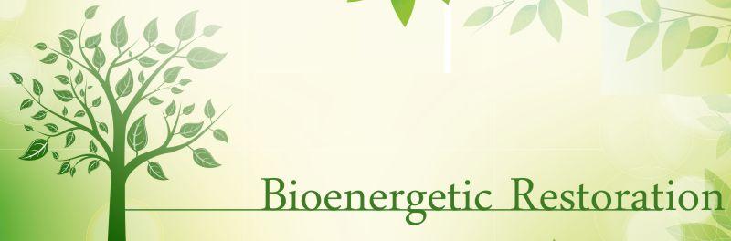 Bioenergetic Therapy & Bioenergetic Medicine
