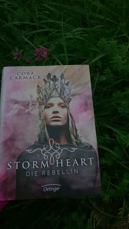 "Stormheart ""Rebellin"" Book Cover"