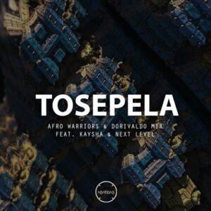 Afro Warriors & Dorivaldo Mix Feat. Kaysha & Next Level - Tosepela