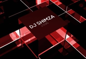 Dj Shimza Feat. Busiswa & Dj Thakzin - Party Ka Shimza (Afro House) 2016
