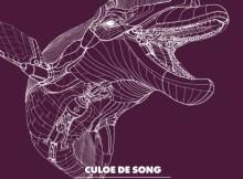 Culoe De Song - Aftermath (Afro House) 2017