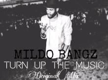 Mildo Bangz - Turn Up The Music (Original Mix) 2017