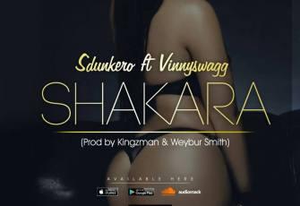 Dj Sdunkero feat. Vinnyswagg - Shakara (Afro House) 2017