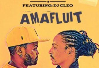 Brickz feat. DJ Cleo - Amafluit (Kwaito) 2017