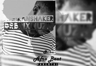 Dr. DrixMuzik - Afrikan Shaker (Afro Beat) 2017