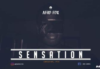 Dj Afro Fox - Sensation (Afro House) 2017
