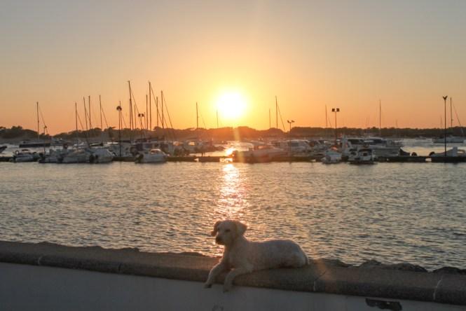 Port de Chiclana - Visiter l'Andalousie